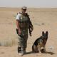 advanced k9 law enforcement training south carolina